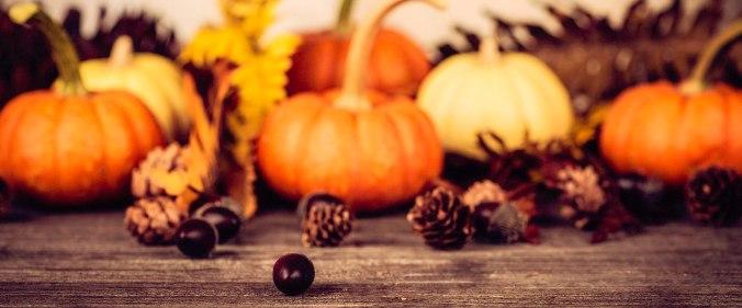 USA_Thanksgiving_1920_800.jpg